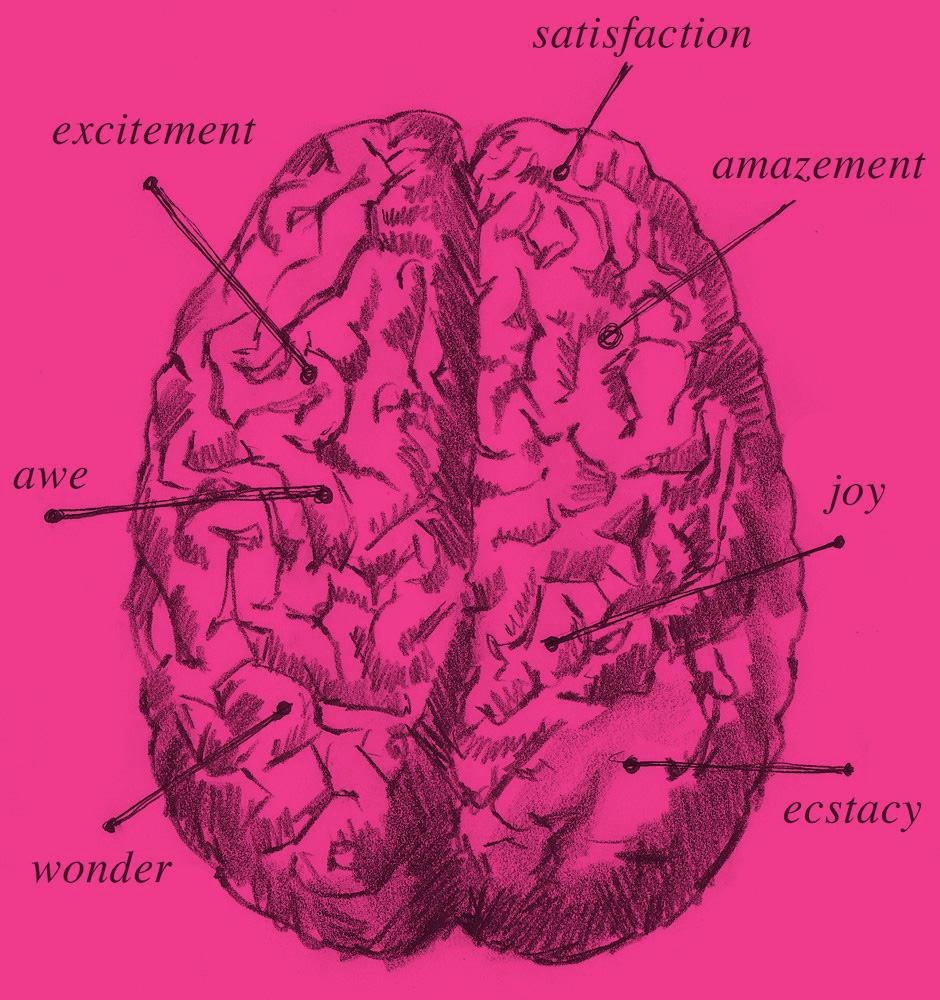 brain-pink
